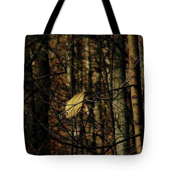 The Last Leaf Tote Bag by Bruce Patrick Smith