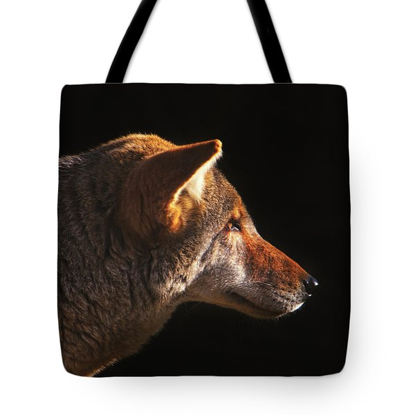 The Last Light Of Day  Tote Bag