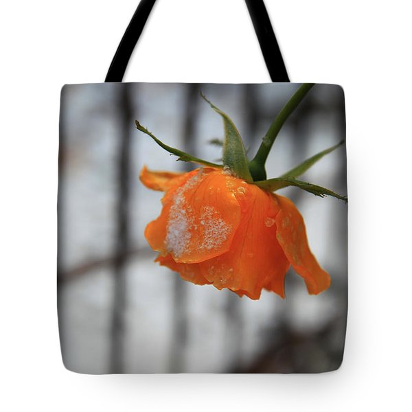 Tote Bag featuring the photograph The Last Rose Of Summer by Jeanette French