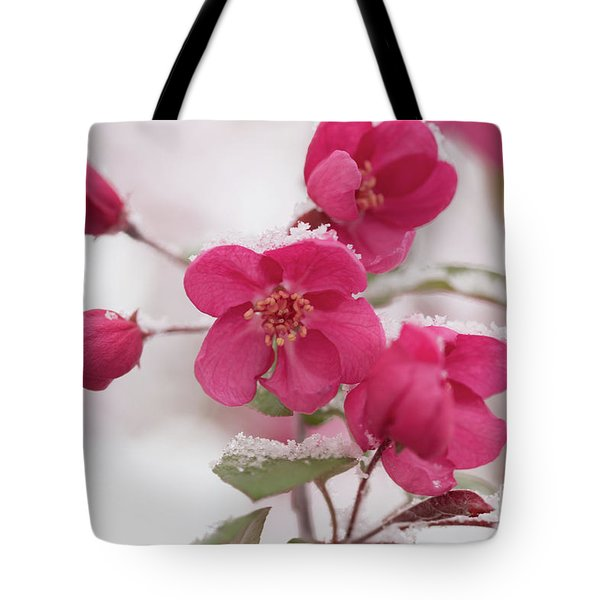 Tote Bag featuring the photograph The Last Snowfall by Ana V Ramirez
