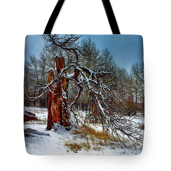 Tote Bag featuring the photograph The Last Stand by Shane Bechler