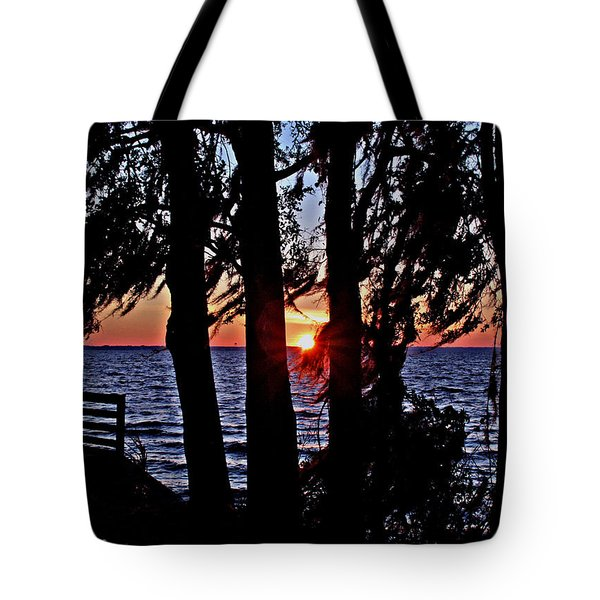 The Last Sun Tote Bag