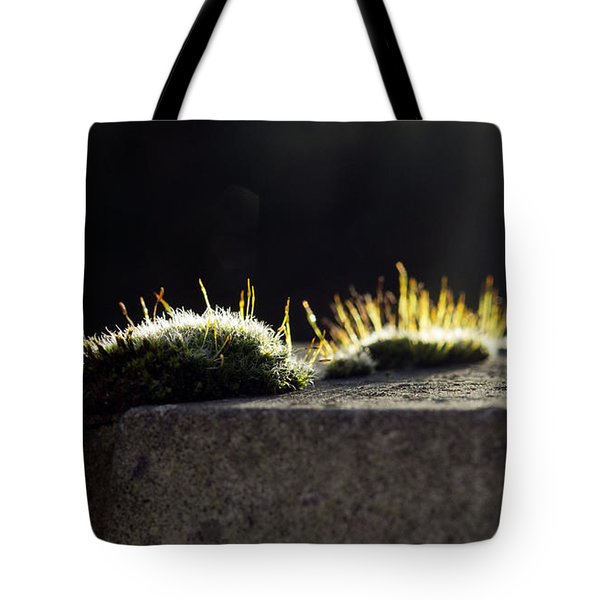 Tote Bag featuring the photograph The Last Sun Of December by Helga Novelli