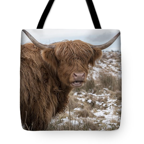 The Laughing Cow, Scottish Version Tote Bag by Jeremy Lavender Photography