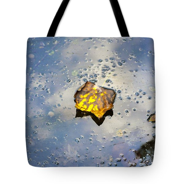 Tote Bag featuring the photograph The Leaf And Liquid Sky by Allen Carroll