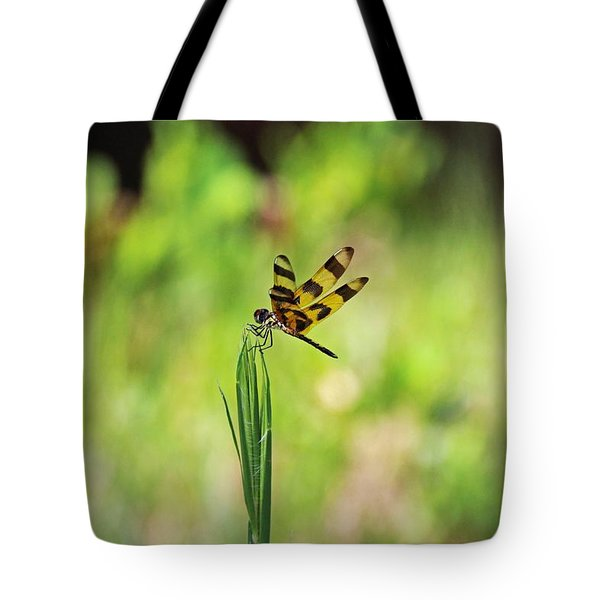 Tote Bag featuring the photograph The Liberation by Michiale Schneider