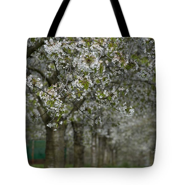 The Life Awakes 10 Tote Bag