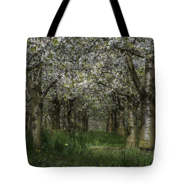 The Life Awakes 11 Tote Bag