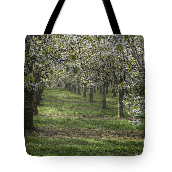 The Life Awakes 13 Tote Bag