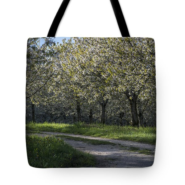The Life Awakes 2 Tote Bag