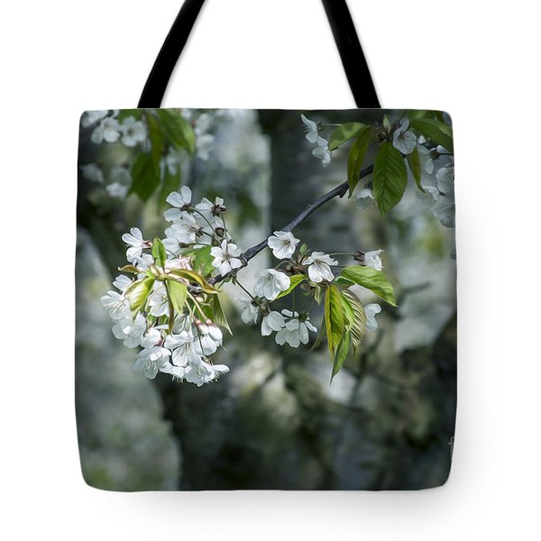 The Life Awakes 9 Tote Bag