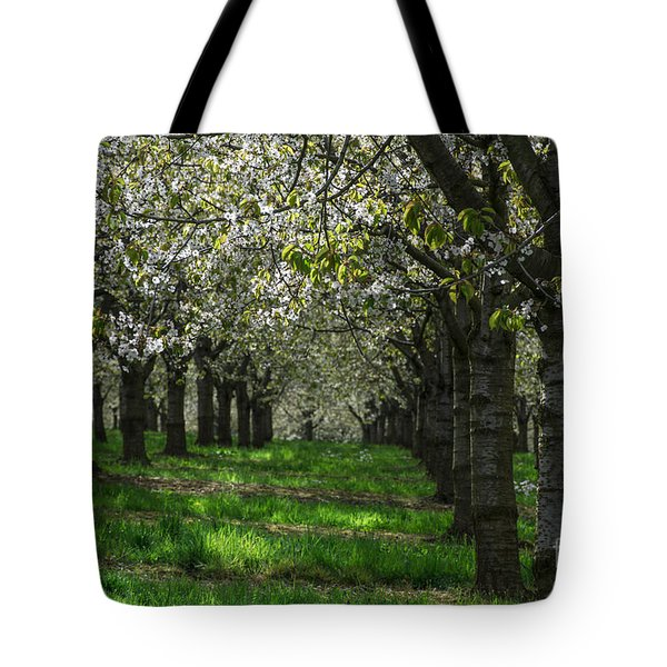 The Life Awakes14 Tote Bag