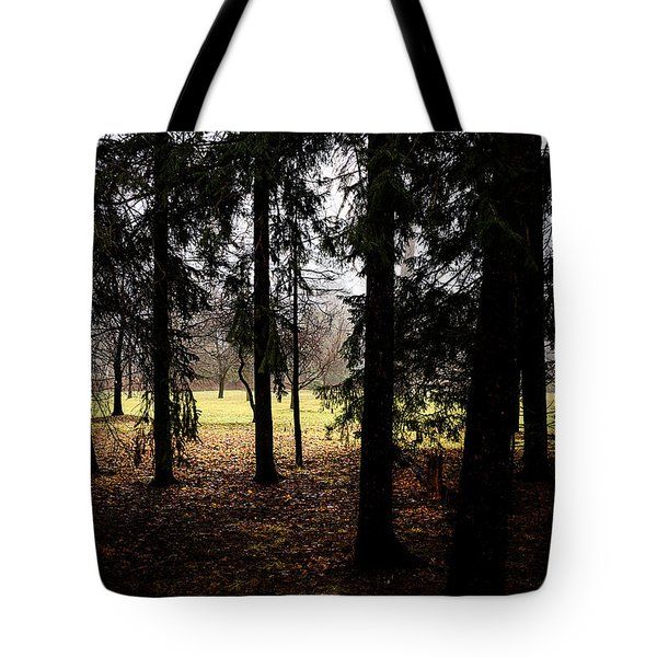 The Light After The Woods Tote Bag