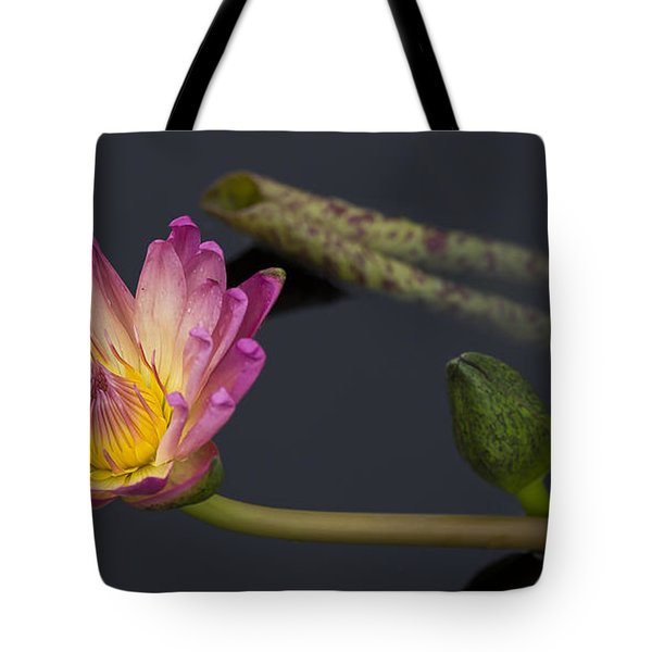 The Light From Within Tote Bag