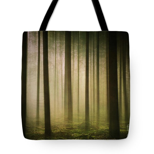 The Light In The Woods Tote Bag
