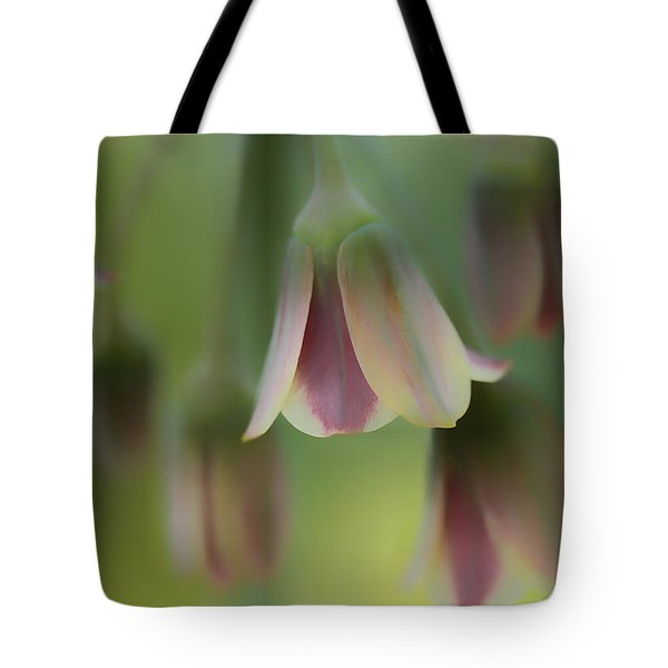 The Light Inside The Belfry  Tote Bag