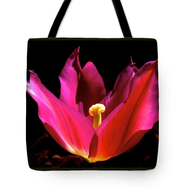 The Light Of Day Tote Bag