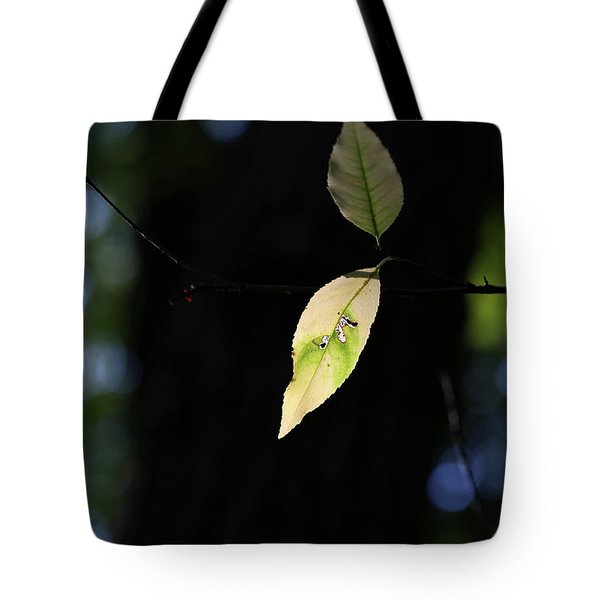 The Light Shines Through Tote Bag by Mary Bedy