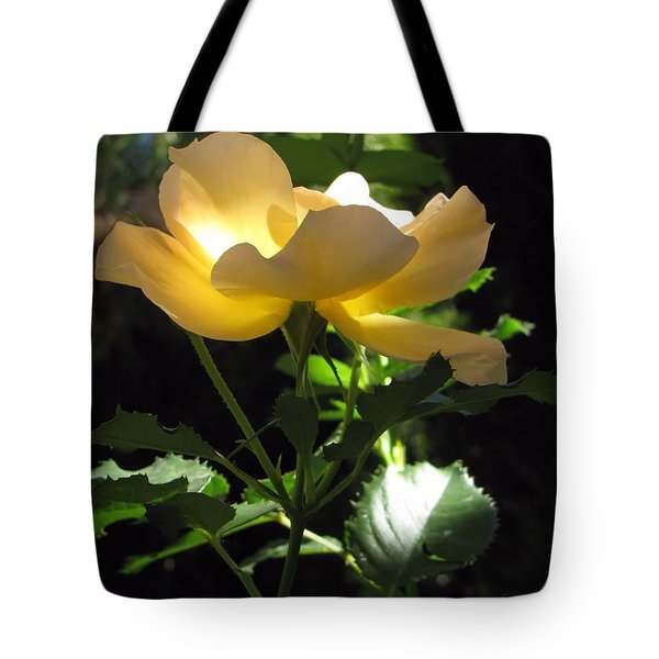 Tote Bag featuring the photograph The Light Within 2 by Michelle H