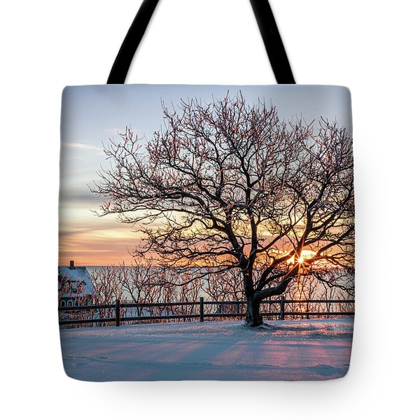 The Lighthouse And Tree Tote Bag