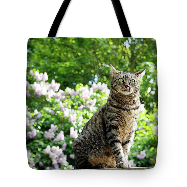 The Lilac Fairy Tote Bag