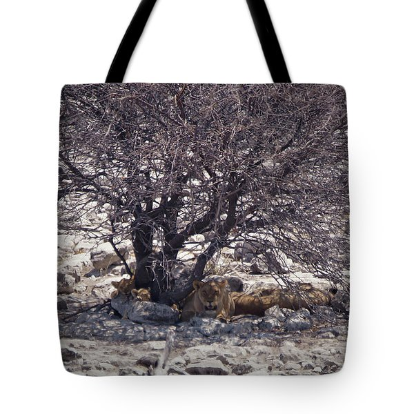 The Lion Family Tote Bag by Ernie Echols