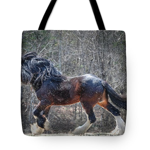 The Lion Of Winter Tote Bag