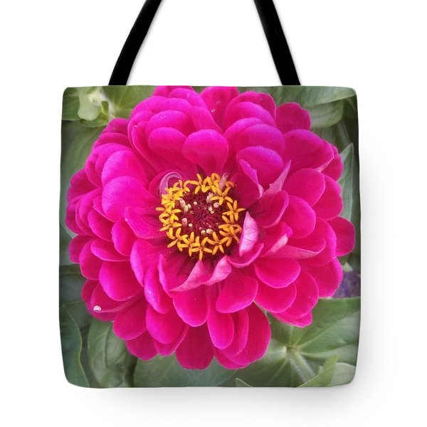 The Little Big Things Tote Bag