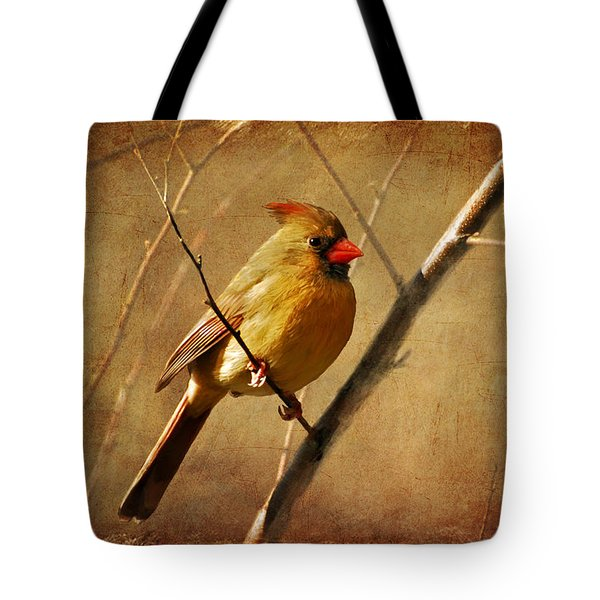 The Little Mrs. Tote Bag