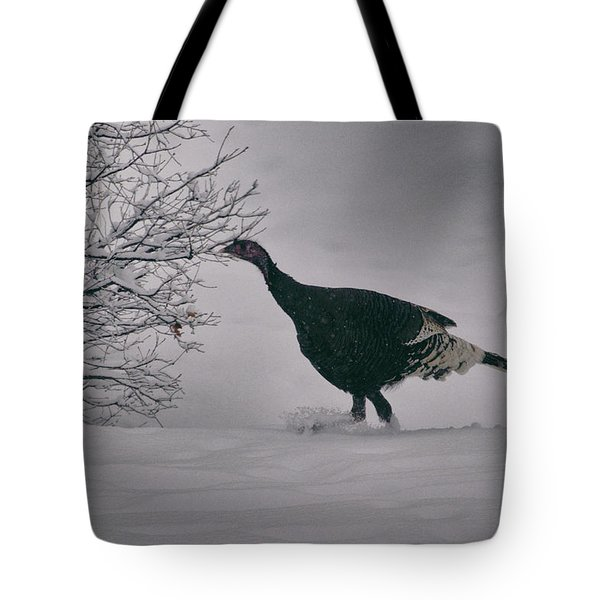 The Lone Turkey Tote Bag by Jason Coward
