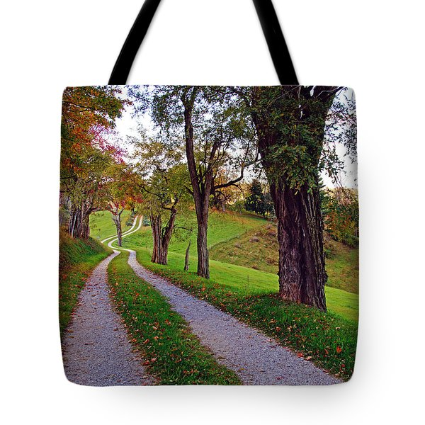 The Long Road In Autumn Tote Bag
