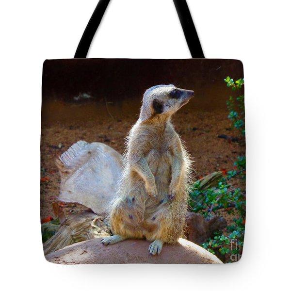 The Lookout - Meerkat Tote Bag