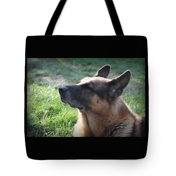 The Love Of An Old Dog Tote Bag