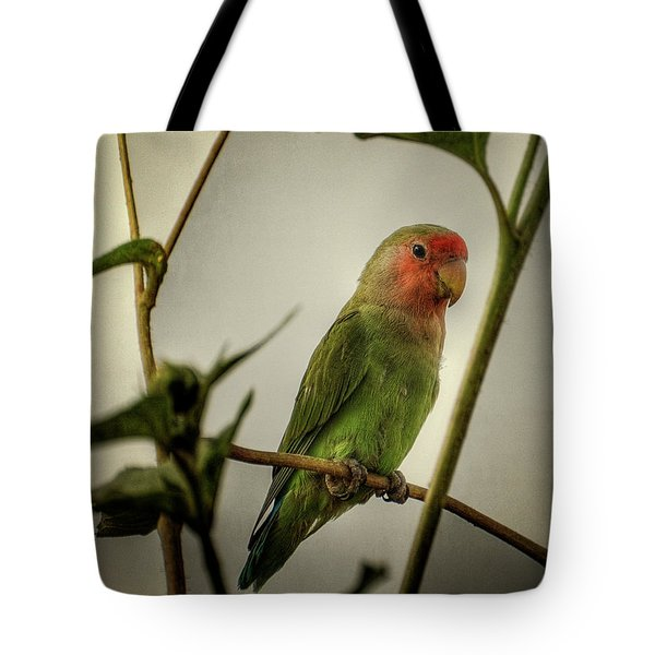 The Lovebird  Tote Bag