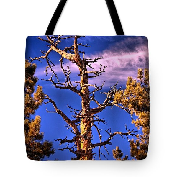The Lurker Tote Bag by Charles Dobbs