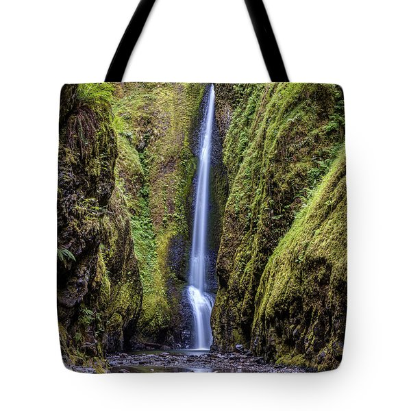 The Lush And Green Lower Oneonta Falls Tote Bag