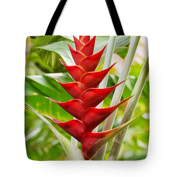 Tote Bag featuring the photograph The Macaw Flower  by MaryJane Armstrong