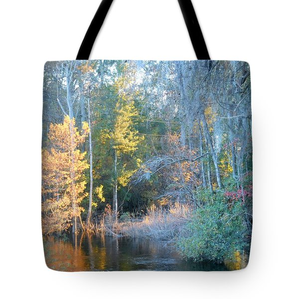 Tote Bag featuring the photograph The Magic Of Autumn Sunshine by Kay Gilley
