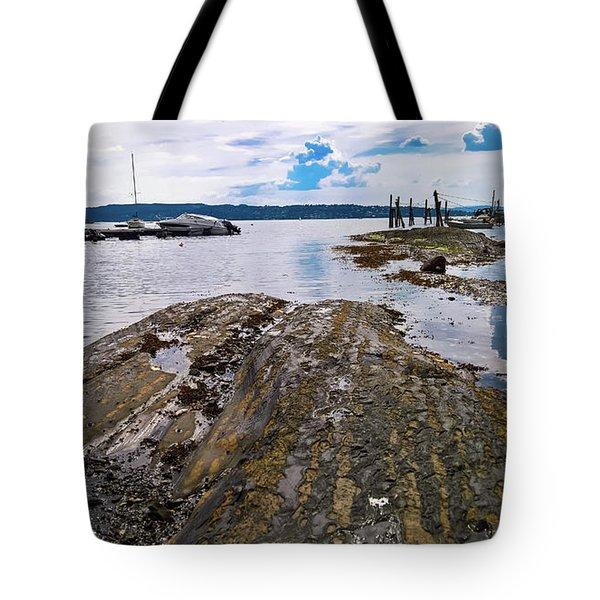 The Magic Of Lindoya Tote Bag