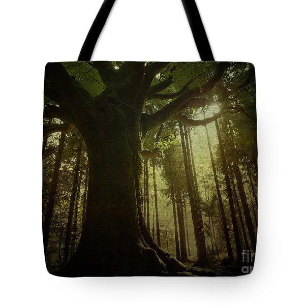 The Magical Beech Tote Bag