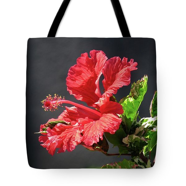 The Mallow Hibiscus Tote Bag