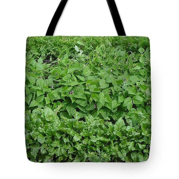 The Market Garden Landscape Tote Bag