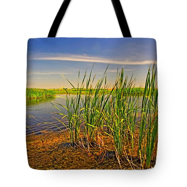 The Marshes Of Brazoria Tote Bag