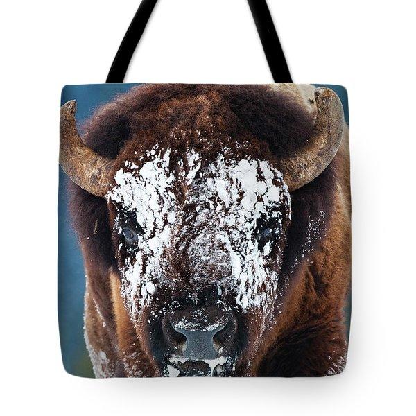 The Masked Bison Tote Bag