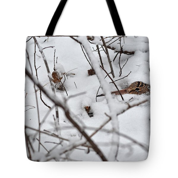 The Maternal Instinct Of The American Woodcock Tote Bag