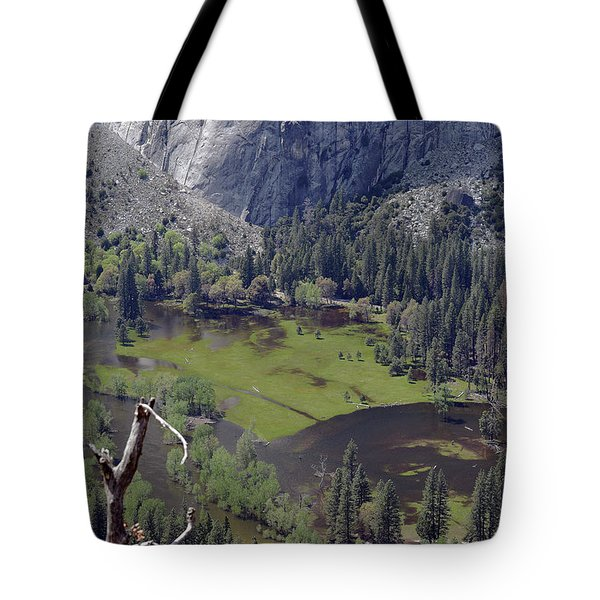 The Meadow From Four Mile Trail Tote Bag