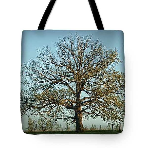 The Mighty Oak In Spring Tote Bag