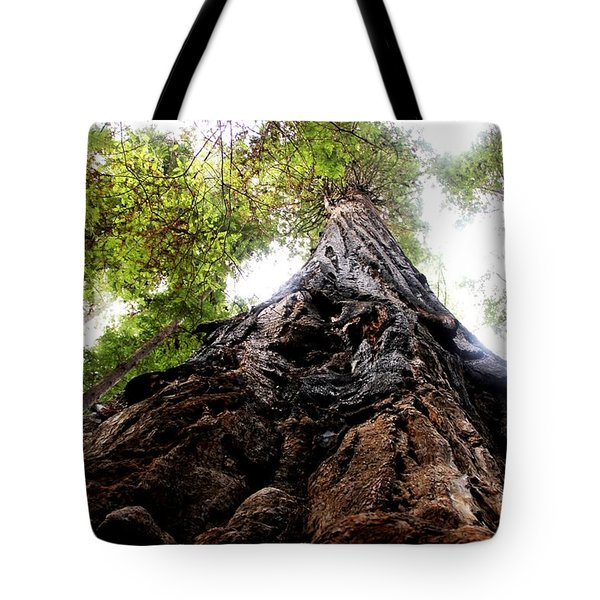 The Mighty Redwood Tote Bag