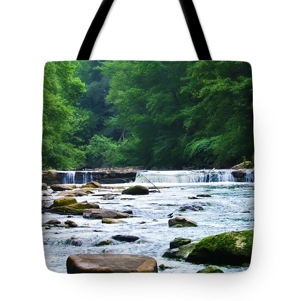 The Mighty Wissahickon Tote Bag by Bill Cannon