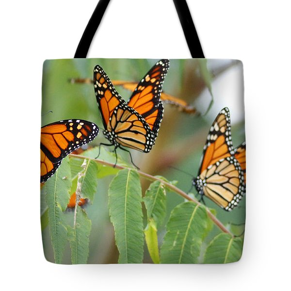 The Migration Of The Monarchs Tote Bag